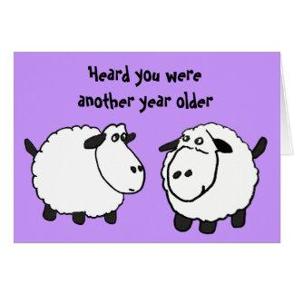 BV- Funny Sheep Birthday Card