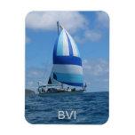 BVI premium magnet