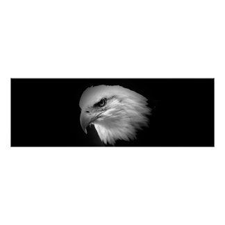 BW American Bald Eagle Print - Panoramic Posters