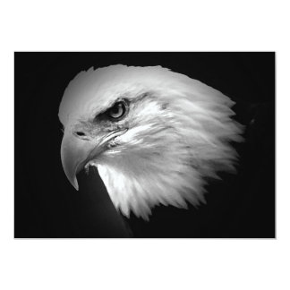 BW Bald American Eagle Invitation
