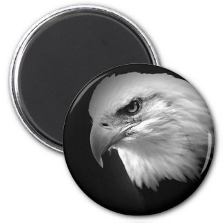 BW Bald Eagle Magnet