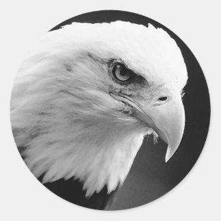 BW Bald Eagle Round Sticker