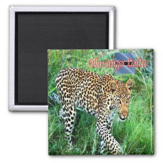 BW - Botswana - Okavango Delta Ghepard Magnet