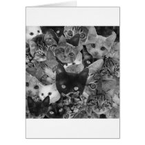 BW Cat Collage Card