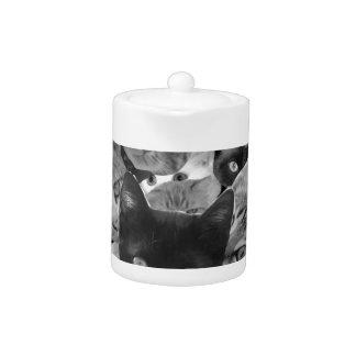 BW Cat Collage Teapot