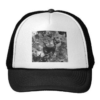 BW Cat Collage Trucker Hat