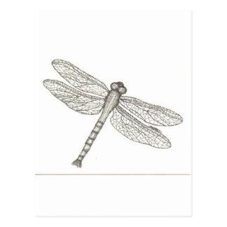 bw_dragonfly05 001 postales
