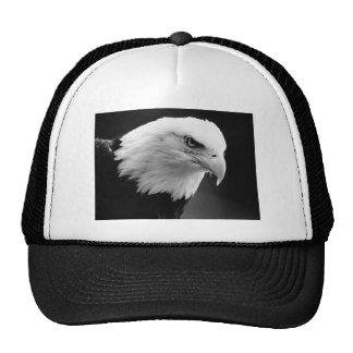 BW Eagle calvo Gorras De Camionero