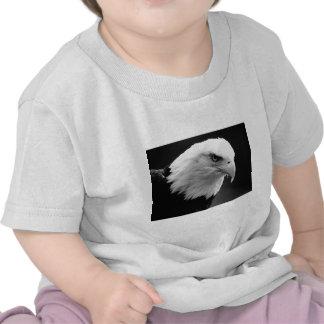 BW Eagle calvo Camiseta