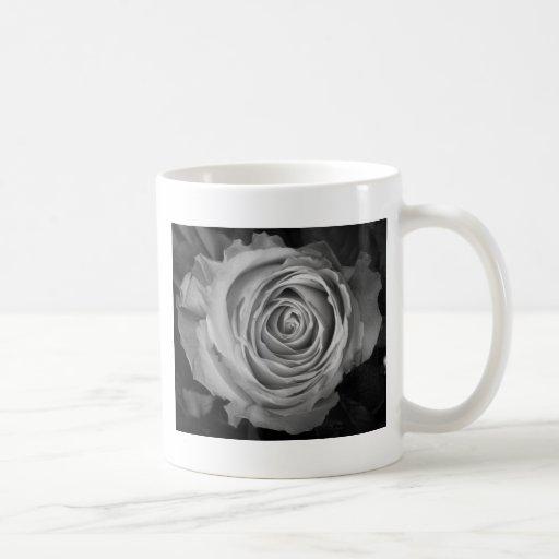 BW espiral color de rosa Taza De Café