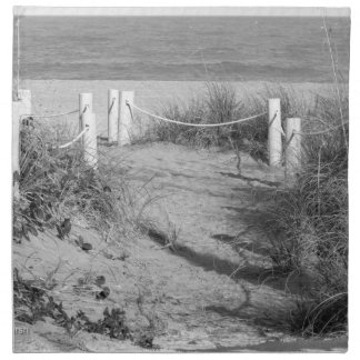BW Fort Pierce, Florida beach walk dune roped off Napkin