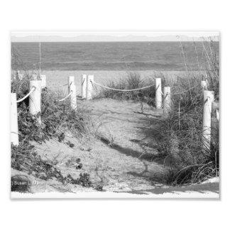 BW Fort Pierce, Florida beach walk dune roped off Photo Print