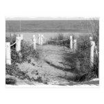 BW Fort Pierce, Florida beach walk dune roped off Postcards
