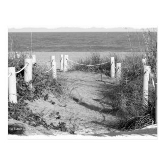 BW Fort Pierce, Florida beach walk dune roped off Postcard
