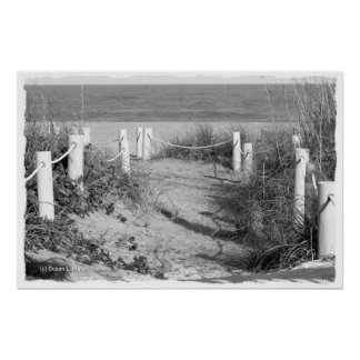 BW Fort Pierce, Florida beach walk dune roped off Poster