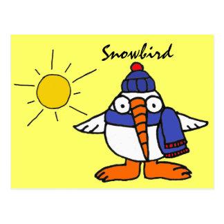 BW- Funny Snowbird Postcard