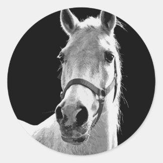 BW Horse Classic Round Sticker