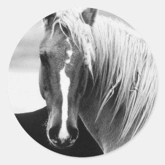 BW Horse Portrait Classic Round Sticker