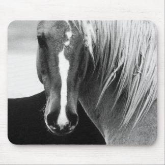 BW Horse Portrait Mouse Pad