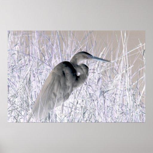 bw invertido del egret frecuentado impresiones