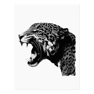 BW Jaguar Postal