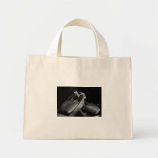 BW Pointe Shoes Bag