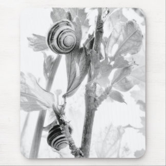 BW Snails Mouse Pad
