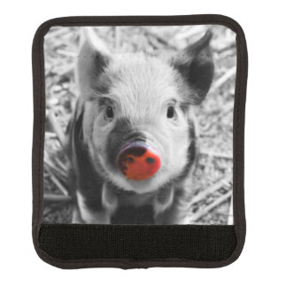 BW splash sweet piglet Handle Wrap