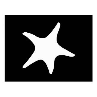 BW Starfish Postcard