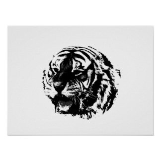 BW Tiger Poster Print - SiberianTigers Posters