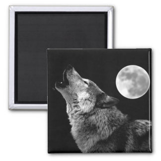 BW Wolf Howling at Moon Magnet