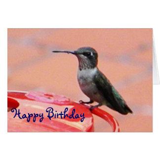 BX- Hummingbird Birthday Card