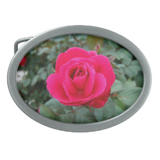 BY ANY OTHER NAME! (Rose 3) ~ Oval Belt Buckle