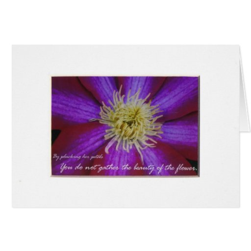 By plucking her petals greeting card