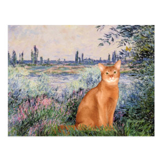By rhe Seine - Red Abyssinian Postcard