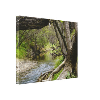 By The Creek Stretched Canvas Prints