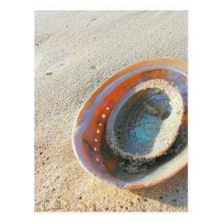 by the seashore postcard