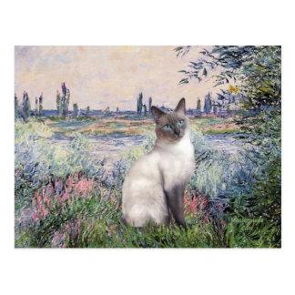 By the Seine - Blue Point Siamese cat Postcard