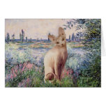 By the Seine - Cream Sphynx cat Greeting Card