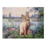 By the Seine - Cream Sphynx cat Post Cards