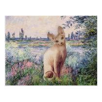 By the Seine - Cream Sphynx cat Postcard