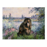 By the Seine - Persian Calico cat Post Card