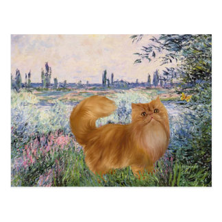By the Seine - Red Persian cat Postcard