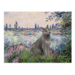 By the Seine - Russian Blue cat Post Cards