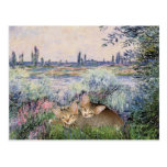 By the Seine - Two kittens Post Cards
