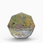 """By the Water! Acrylic Award<br><div class=""""desc"""">By the water at the creek and nestled within the mountains of Chimney Rock. This makes gift items</div>"""