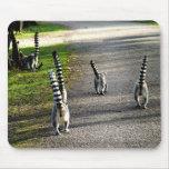 Bye Bye Lemurs Mouse Mats