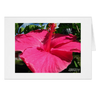 Byodo-In Temple Pink Flower Card