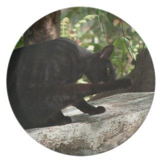 BYOG Black Cat Yoga Melamine Plate