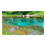 Byrds Mill Spring - Color Saturated Poster